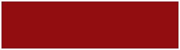 Nam Long logo 366